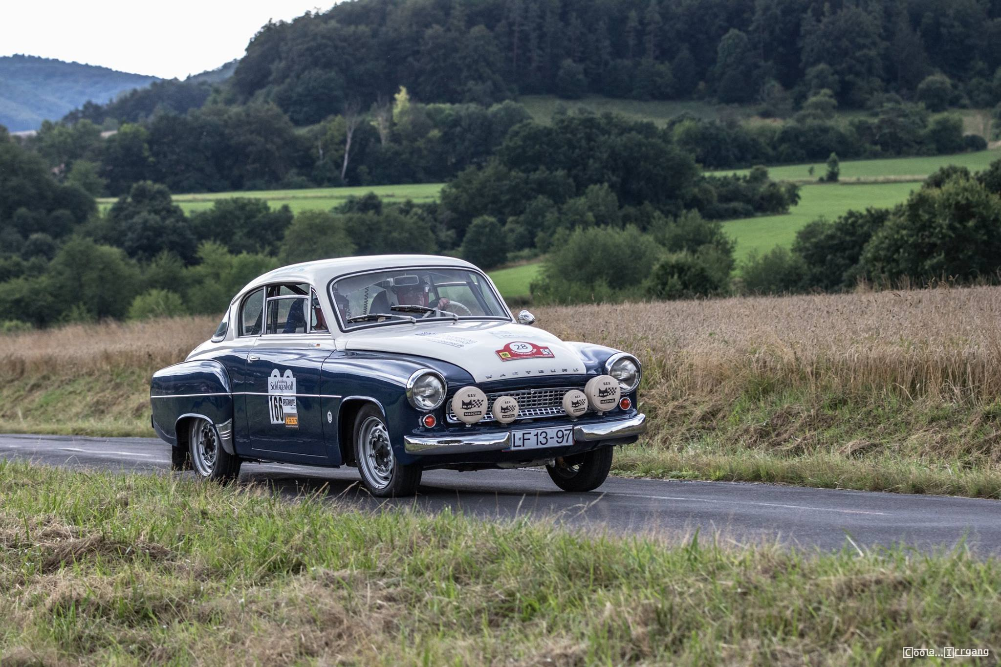 wartburg rallye 2019