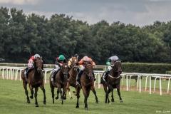 Pferderennen auf der Neuen Bult