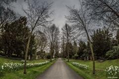 Stadtfriedhof Engesohde Hannover08