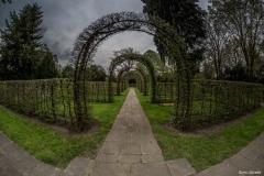 Stadtfriedhof Engesohde Hannover16