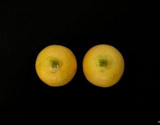 Fruit Porn