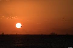 Sonnenaufgang Playa del Carmen