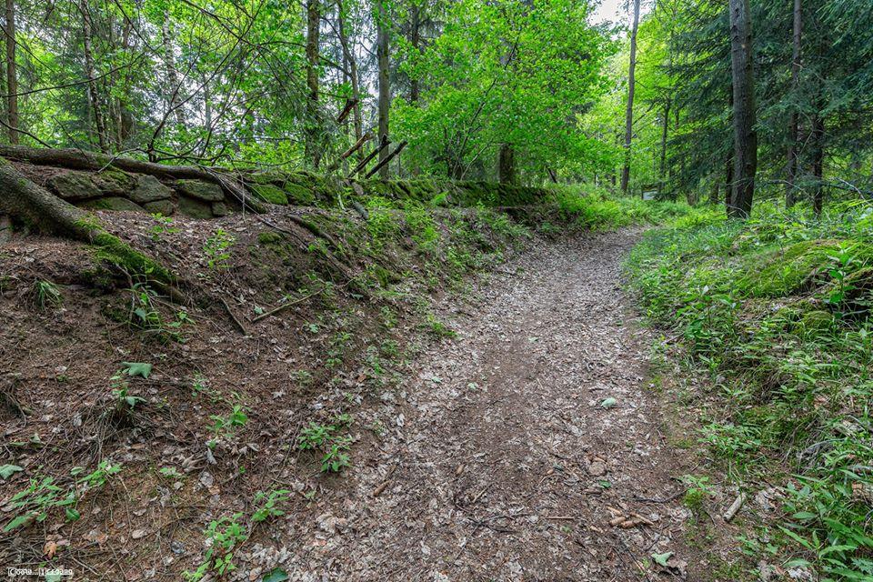 Historische Bobahn bei Altenberg