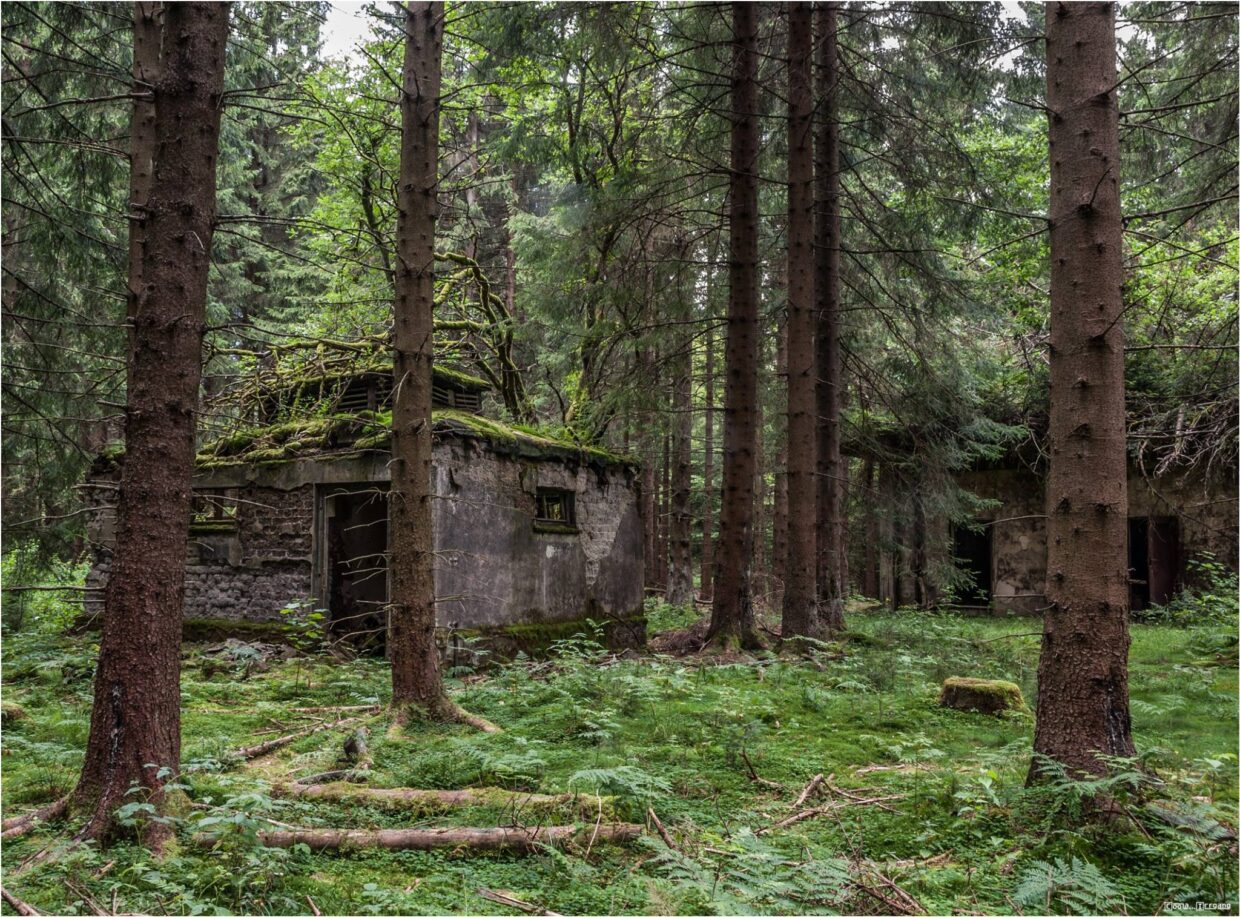 Lost Places Harz